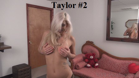 WPL Taylor 2 323